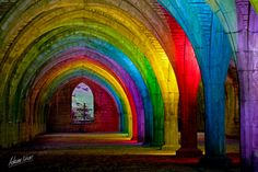 Stone vaulted chamber at Fountains Abbey lit by coloured lights