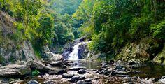 https://flic.kr/p/vETKny | Crystal Falls, Cairns