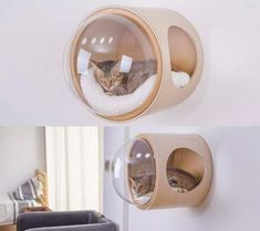 Wall-Mounted Cat Bed - Not Any Gadgets
