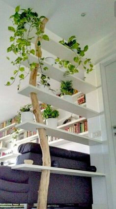 11 fantastic room divider ideas for your home house ideas living … - Raumteiler Living Room Partition Design, Living Room Divider, Room Partition Designs, Diy Room Divider, Divider Ideas, Bookshelf Room Divider, Wood Partition, Room Divider Walls, Glass Shelves In Bathroom