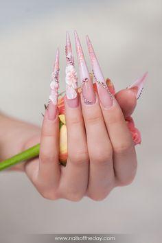 Manicure acrylic #25399