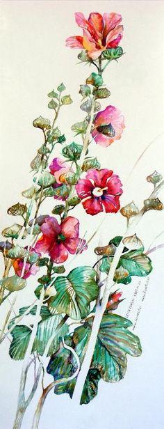 Hollyhocks watercolor by lottie
