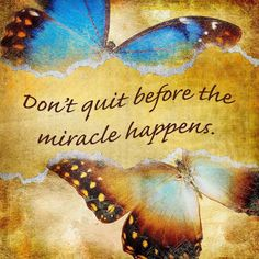 Don't Quit Before The Miracle Happens Butterfly - Vinyl Print - Why should decorating be limited to indoors? These vinyl prints are perfect for outdoor entertainin - Positive Thoughts, Positive Quotes, Positive Vibes, 365 Jar, Butterfly Quotes, Butterfly Art, Life Quotes Love, Butterfly Decorations, Miracles Happen