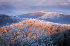 Blue Ridge Mountains Photograph by Amy White and Al Petteway In winter snow and rime coat the Blue Ridge Mountains, where the rising sun striking icy branches appears to set the trees afire. Nc Mountains, North Carolina Mountains, North Carolina Homes, Blue Ridge Mountains, Winter Trees, Winter Snow, Snow Mountain, Photo Tree, Amy White