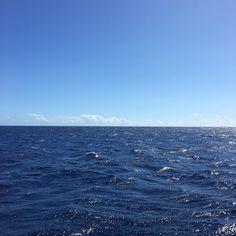 When the water is like a giant indigo dye bath ... #oahu #honolulu #vaykay