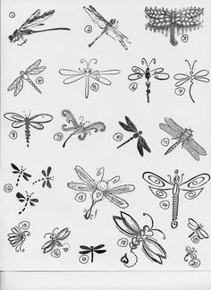 Dragonfly-strong lines, bold. But simple design with just