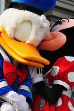 Donald Duck & Minnie Mouse-making Daisy jealous Walt Disney, Disney Love, Disney Magic, Disney Mickey, Disney Parks, Disney Fanatic, Disney Addict, Mickey Mouse And Friends, Minnie Mouse
