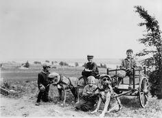 Boys having fun with their dogs, early 1900s