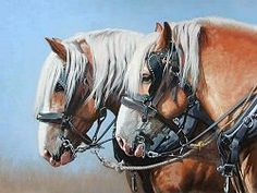 Draft Horse Limited Edition Prints on Paper and Canvas from artist Adeline Halvorson