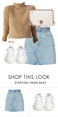 """Untitled #5243"" by theeuropeancloset ❤ liked on Polyvore featuring RE/DONE, Ash and Christian Dior"