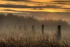 Season of Mists by sarah jannah, via Flickr