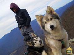 Pets that travel #MillionPets
