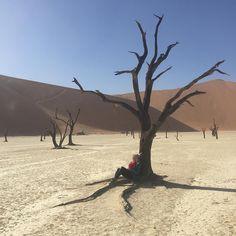 #sister #tree #sossusvlei #namibia