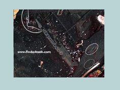 Dale Earnhardt Death Car   Dale Earnhardt's Accident ...Dale Earnhardt Bloody Car