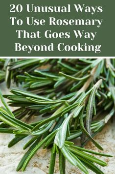 20 Unusual Ways To Use Rosemary That Goes Way Beyond Cooking is part of Medicinal herbs garden - Rosemary is one of the most aromatic and pungent herbs around, here are 20 creative ways to use this wonderful versatile herb and not just in recipes Rosemary Plant, How To Dry Rosemary, Uses For Rosemary, Rosemary Ideas, Rosemary Water, Basil Plant, Healing Herbs, Medicinal Plants, Side Dishes