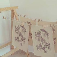 Prints drying in the studio Led, Studio, Paper, Prints, Artwork, Roses, Work Of Art, Studios