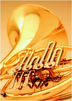 French Horn - a beautiful instrument with a lovely, rich sound. Music Is My Escape, Music Is Life, Horn Instruments, Mellophone, Guitar Drawing, Band Nerd, French Horn, All About Music, Sketch Inspiration