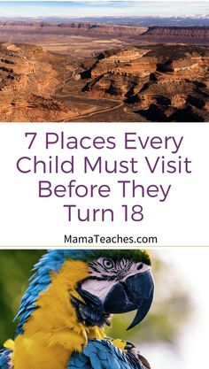 7 Places Every Child