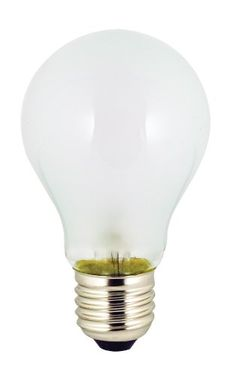 Ancor 531025 Marine Grade Electrical Light Bulb (Medium Screw/Standard Base, 12-Volt, 25- Watt, 2.08-Amp, 2-Pack)  //Price: $ & FREE Shipping //     #sports #sport #active #fit #football #soccer #basketball #ball #gametime   #fun #game #games #crowd #fans #play #playing #player #field #green #grass #score   #goal #action #kick #throw #pass #win #winning