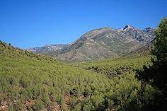 SierraAlmijara.JPG.......... El casco urbano de Almuñécar está asentado al final de los valles de los ríos Seco (al oeste) y Verde (al este), los cuales están repletos de campos de cultivo. Destacan en el paisaje los Peñones de San Cristóbal, así como las cumbres de la Sierra de la Almijara.