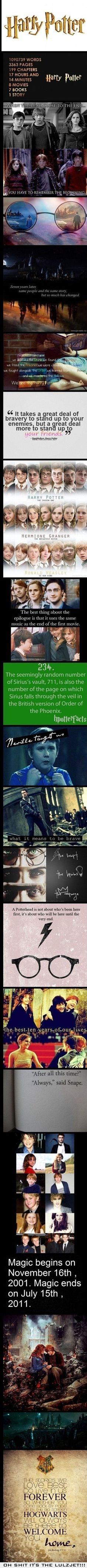 Harry Potter @carolynknaack