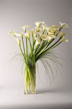 Modern and luxurious floral arrangement of calla lilies
