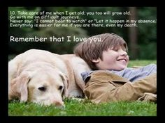 10 Things Your Dog Would Tell You If It Could Speak.wmv