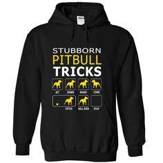 Stubborn Pit bull tricks