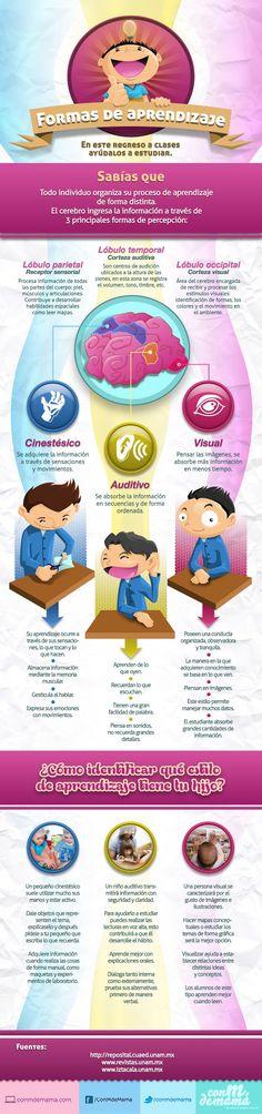 """Hola: Compartimos una interesante infografía sobre """"Aprendizaje – 3 Formas de Percepción Cerebral"""" Un gran saludo.  Visto en: conmdemama.com  Recomendar un tema ____ :…"""