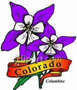 Dynamic Art Summer Camp in #Colorado
