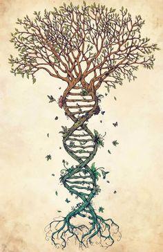 Representando el ADN como el árbol de la vida.