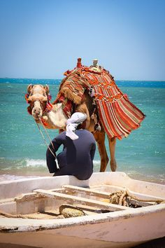 Along the Nile, Egypt Visit Egypt, Nile River, Nature Images, Ancient Egypt, Travel Around The World, Beautiful World, Peace And Love, Beautiful Pictures, Egypt Travel