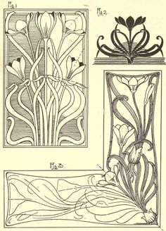 Crocus, plate XII from Nature drawing and design, by Frank Steeley, publisher : G. W. Bacon and Co, London, 1904