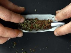 Cannabis Cannabis, How To Dry Basil, Herbs, Science, Neurons, Ganja, Herb, Medicinal Plants