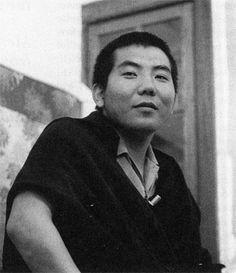 3rd Jamgon Kongtrul Rinpoche (karma kagyu)