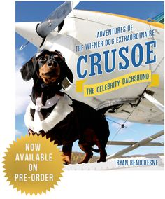 Sooo excited to get Crusoe's new BOOK I just pre-ordered! Find it here: