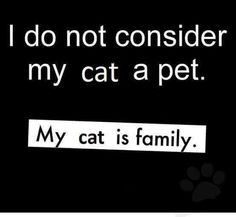 Goes for my dog too.