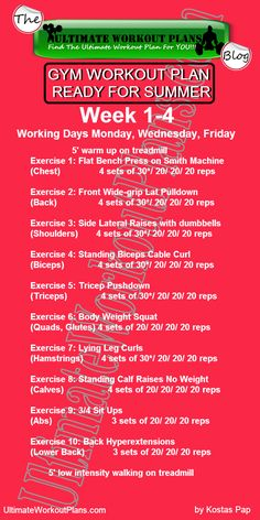 GYM WORKOUT PLAN READY FOR SUMMER WOMEN 1st month » UltimateWorkoutPlans.com