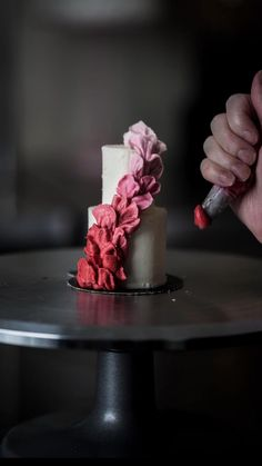 Cake Decorating Frosting, Cake Decorating Videos, Cake Decorating Techniques, Mini Wedding Cakes, Mini Cakes, Cupcake Cakes, 3d Cakes, Fondant Bow, Fondant Tutorial