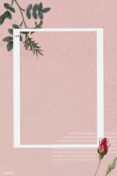 Blank collage photo frame template on pink background vector   premium image by rawpixel.com / NingZk V.