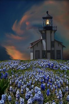 *Point Cabrillo Lighthouse - Northern California - Pixdaus