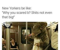 #newyork #rats #funny #lol #lmfao
