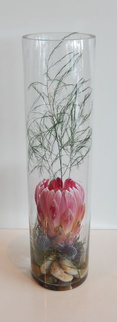 A contemporary cylinder vase arrangement incorporating a single pink Protea bloom a stem of sprengii and two blue thistles anchored in decorative stones with water !  Simple, but very effective and attractive for a centre piece for a corporate event.