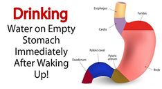 Benefits of Drinking Water On an Empty Stomach Immediately After Waking Up