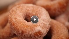 Donuts - Rudolph's Bakery | 24Kitchen