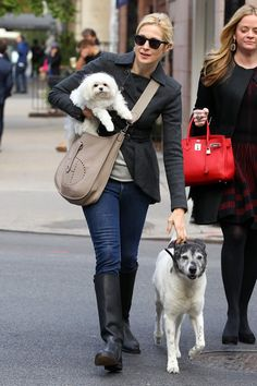 Kelly Rutherford juggles pooch, coffee, and Hermes Evelyne - PurseBlog