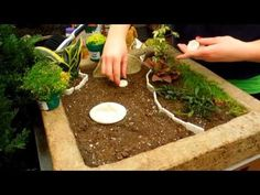 How to Make a Fairy Garden -  YouTube-Video 2:35 min..Tips on how to make a unique Fairy Garden for your home. At Highlands Garden Center in Centennail, Colorado, we have a large variety of fun Fairy Garden furniture, trinkets, houses, and plants to make the most unique Fairy Garden