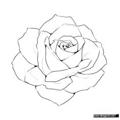 Rose Line Drawing Template - Drawing t . - Rose Line Drawing Template – Drawing t … – # - Flower Drawing Tutorials, Flower Line Drawings, Flower Sketches, Pencil Art Drawings, Art Drawings Sketches, Easy Drawings, Tattoo Sketches, Cool Rose Drawings, Roses Drawing Tutorial