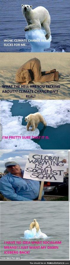 a polar bear s 10 favorite jokes jokes pinterest