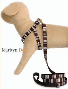 Dog Harness, Dog Leash, Engraved Dog Tags, Boy Dog, Pet Collars, Large Dogs, Small Dogs, Dog Design, Dog Toys